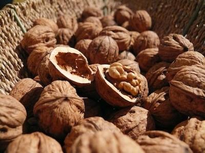 Ořechový olej - silný antioxidant s využitím v kosmetice i kuchyni