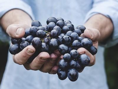 Raw Food - objevte klady i zápory živé stravy