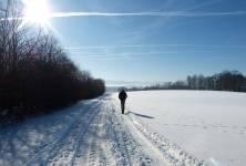 Existuje spolehlivý zdroj vitamínu D v zimě?