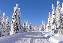 Jak a čím nám zima škodí?