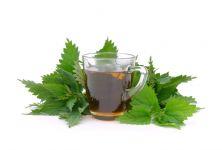 Kopřiva - bylinky pro zdraví