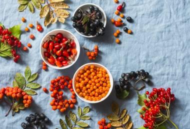 Podzimní bylinky pro zdraví a vitalitu do sychravých dnů