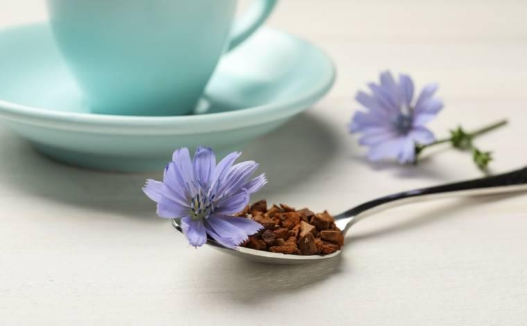 Čekankové slazení pro zdraví – sladidlo nové generace